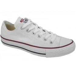 Converse Allstar Optical White Shoe